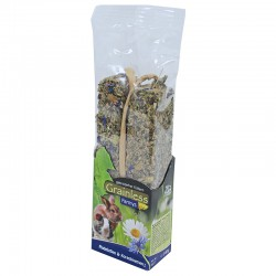 JR Farm Graanvrije stick madelief-korenbloem