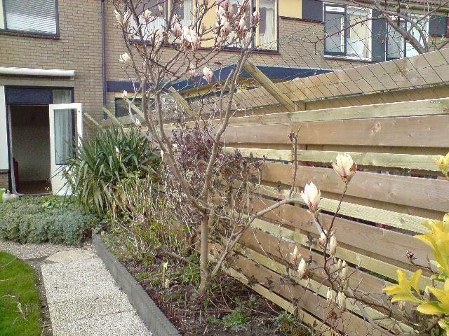Stroomdraad katten tuin u2013 potplanten buiten schaduw