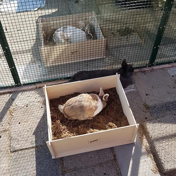 elmato-diggingbox-graafbak-konijnen (11).jpg