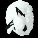 Bunny Rosalie