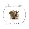 konijnen2
